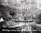 Rustic_Bridge__Pine_Banks_Park.jpg