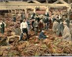 Tobacco_Warehouse_Interior__Richmond__Virginia.jpg