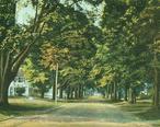 Old_Main_Street_Looking_North__Deerfield__MA.jpg