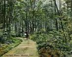 Mountain_Road__Deerfield__MA.jpg