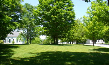 NewSalem_village_common.jpg
