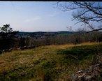 Newtown_Hill_from_Fort_Pnd_Hill.jpg