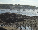 Marblehead_Massachusetts_view_from_town_towards_harbor_and_peninsula.JPG