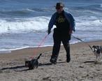 September_beach_in_Salisbury__Massachusetts.jpg