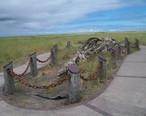 Long_Beach_Whale_Skeleton_Monument.JPG