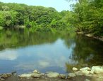 Hill_s_Pond__Monotomy_Rocks_Park__Arlington_Massachusetts.JPG