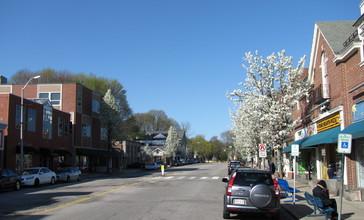 Looking_north_on_Leonard_Street__Belmont_Center_MA.jpg