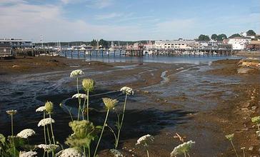 Boothbay_Harbor__summer_morning_at_low_tide.jpg