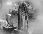 Union_Graveyard_III.jpg