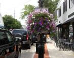 Darien__Connecticut_main_street.jpg