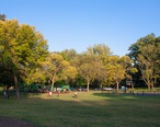 Green_Brook_Park_Playground__Plainfield__New_Jersey.jpg