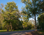 Green_Brook_Park_Drive__Plainfield__New_Jersey.jpg