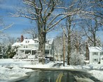 Winter_scene_Summit_NJ_with_trees_and_road_and_houses.JPG