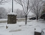 Summit_New_Jersey_horse_trough_and_buildings_and_trees_after_snow.JPG