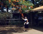 Waipahu_Post_Office_1959.jpg