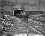 Mine_portal_with_ponies._S._C._Streams_Black_Diamond_Mine__Creekside__Indiana_County__Pennsylvania._-_NARA_-_541530.jpg