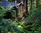 House_amongst_redwood_trees__Cascade_Canyon.jpg