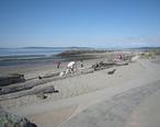 Edmonds__WA_-_beach_at_Brackett_s_Landing.jpg