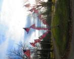 444flags.jpg
