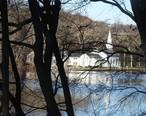 Lower_pond___St_Johns_jeh.jpg