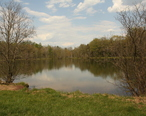 A_lake_in_Kennedy_s_Valley__Perry_County_PA_with_dormant_alder_trees.jpg