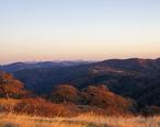 2011-12-04_Morgan_Hill__Henry_W._Coe_State_Wilderness_Park_060__6493352541_.jpg