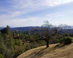 2011-12-04_Morgan_Hill__Henry_W._Coe_State_Wilderness_Park_003__6492982235_.jpg