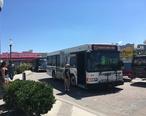 DART_First_State_bus_314_on_Rehoboth_Avenue_at_boardwalk.jpg