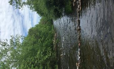 Brodhead_Creek.jpg