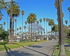 Palms__Houses_and_Park__2144344823_.jpg