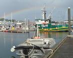 Kodiak_Harbor_after_the_storm__Alaska_2009_disk_2_129__2_.jpg