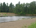 Calapooia_River_at_the_Willamette_River.JPG