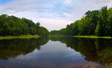 Cedarville_State_Forest_Pond_in_Waldorf__Maryland.jpg