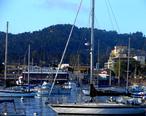DowntownMonterey_Harbor.jpg