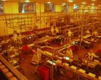 Tillamook_Cheese_Factory.jpg
