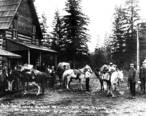 Packtrain_at_the_Montegue_and_Moore_store_in_Darrington__Washington__ca_1905__WASTATE_487_.jpeg