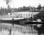 Salmon_cannery_of_the_Friday_Harbor_Packing_Co__Friday_Harbor__Washington__1915__COBB_95_.jpeg