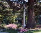 Redwood_City_City_Hall.jpg