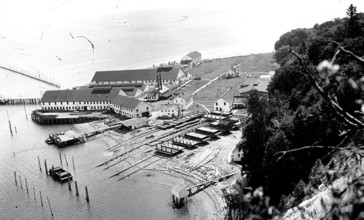 Point_Roberts_cannery__Washington__ca_1918__COBB_185_.jpeg