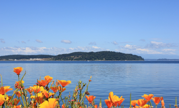 Anderson_Island_and_Puget_Sound_from_Steilacoom.jpg