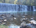 Hollins_Mill_Waterfall_-_Blackwater_Creek_Greenway.jpg