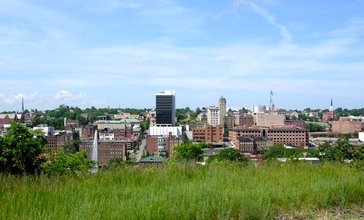 Lynchburg__Virginia_downtown_skyline.jpg