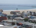 Playa_del_Rey_jungle.jpg