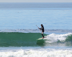 Stand-Up_Paddle_Surfer_at_Cardiff_Reef__California.jpg