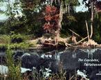 Cascadespark.jpg