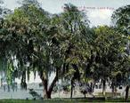 Lake_Eola_from_East_Central_Blvd.__Orlando__FL.jpg