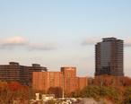 Ravinia__Atlanta.jpg