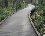 Brooker_creek_nature_walkway.jpg