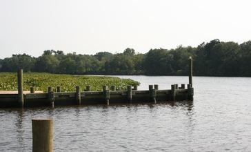 Choptank_River_Denton_MD.jpg