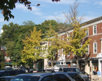 Kraft_Avenue_-_Bronxville__New_York__Copy_1.jpg